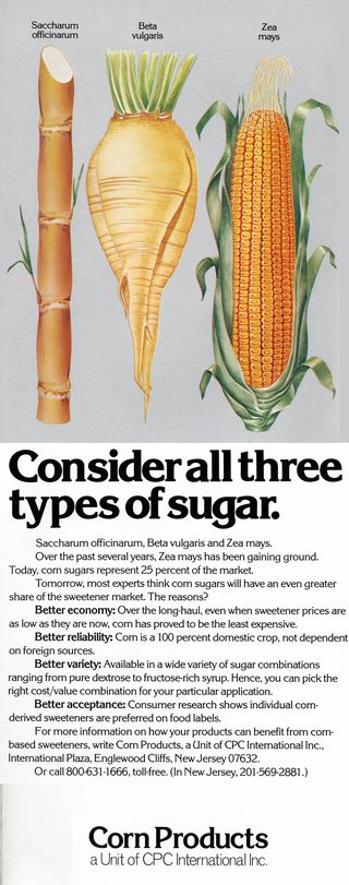Corn sugar001 verticle